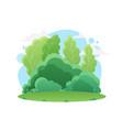 summer green forest or park nature landscape vector image