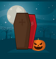 vampire coffin with spiderweb and funny pumpkin vector image