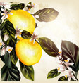 with realistic lemon on a blooming branches vector image