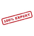 100 Percent Expert Text Rubber Stamp vector image