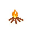 bonfire icon design vector image