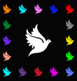 Dove icon sign Lots of colorful symbols for your vector image vector image
