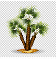 gardening theme wtih palm tree vector image vector image