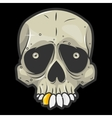 halloween skull Isolated vector image vector image