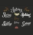 set of hand drawn lettering spring elegant modern vector image vector image
