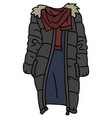 the funny gray coat vector image