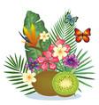 tropical garden with kiwi vector image vector image