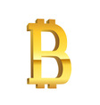 Bitcoin golden currency symbol vector image