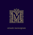 monogram with crown m vector image vector image