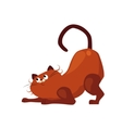 Stretching Cat Flat vector image