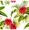 tropical flowers and plants pattern vector image vector image
