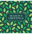 seasons greetings card with mistletoe background vector image
