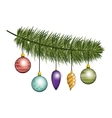 christmas pine branch with garlands vector image vector image