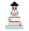 Graduation cap and owl vector image