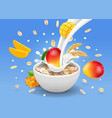 instant oatmeal mango vector image vector image