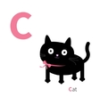 Letter C Cat Zoo alphabet English abc with vector image vector image