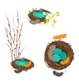 birds nests with eggs set vector image vector image