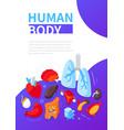 human body - modern colorful isometric web banner vector image