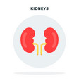 human kidney in a gray circle flat isolated vector image
