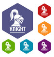 knight helmet icons hexahedron vector image vector image