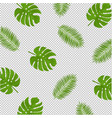 monstera and palm branch transparent background vector image vector image