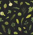 seamless pattern with green plants salad leaves vector image vector image