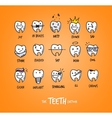 Teeth characters orange vector image vector image