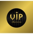 Vip invitation card vector image