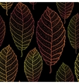Autumn transparent leaves seamless pattern Dark vector image vector image
