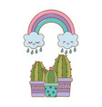 cactus with cloud and rainbow vector image