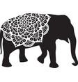 elephant mandala design vector image