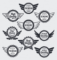 Retro vintage label Badge Set vector image vector image