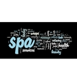 Spa word cloud vector image