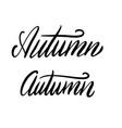 handwritten word autumn black ink calligraphy vector image vector image
