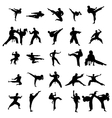 Karate silhouettes set vector image vector image