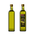 olive oil glass bottles with olive oil splash vector image vector image