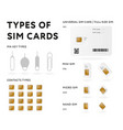 types sim cards colored vector image vector image