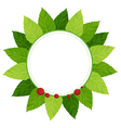 A leaf plate vector image vector image