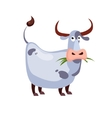 Cow Chewing Grass vector image vector image