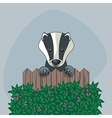 Cute Badger vector image