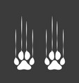 paw logo design vector image vector image