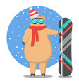 pig on holidays riding on a snowboard vector image