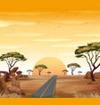 savanna scene with road and sunset vector image vector image