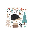 cute hand drawn hedgehog and doodle forest plants vector image vector image