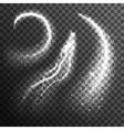 Glitter Particles Black White Transparent Set vector image vector image