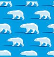 polar bears on a blue background vector image vector image
