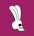 rabbit skull white bunny with skeleton head with vector image