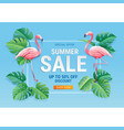 summer sale card with two pink flamingo vector image vector image