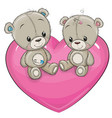 two teddy bears are sitting on a heart vector image vector image