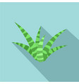 white green aloe icon flat style vector image